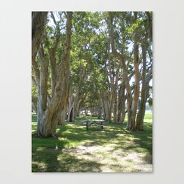 AMONGST THE TREES Canvas Print