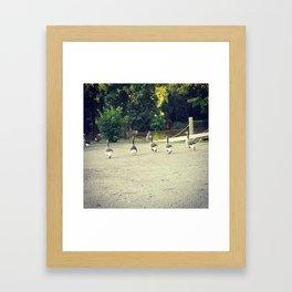 Goose Caboose Framed Art Print