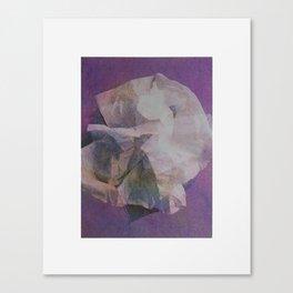 Delicacy Canvas Print