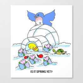 Spring Yet? Canvas Print