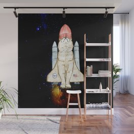 Space cat Wall Mural