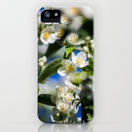 Goblet collection № IV iPhone Case