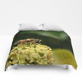 The Bee Comforters