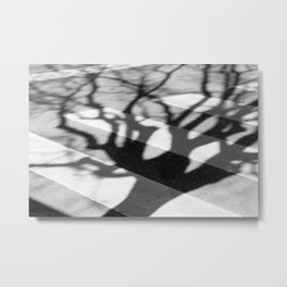 zebra crossing, tree shadow Metal Print