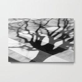 zebra crossing, tree shadow Metal Print