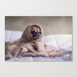 Snug pug in a rug Canvas Print