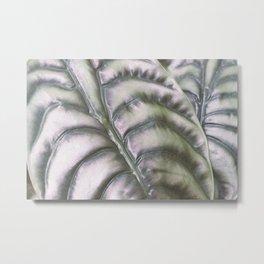 iridescent plant Metal Print