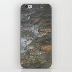 Natural Mosaic 3 iPhone & iPod Skin