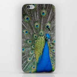 Fabulous and I know it iPhone Skin