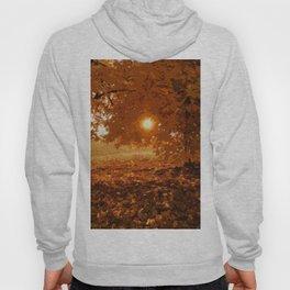 Autumnal Sunlight Hoody