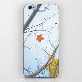 Alone in Autumn iPhone Skin