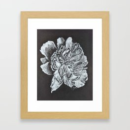 Tennessee Peony black and white Framed Art Print
