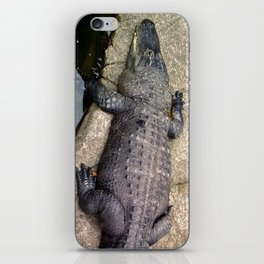 Crocs at the Zoo iPhone Skin
