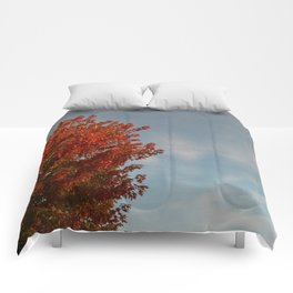 Fall by Teresa Thompson Comforters