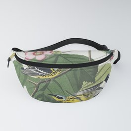 Black  Yellow Warblers from Birds of America (1827) by John James Audubon etched by William Home Liz Fanny Pack