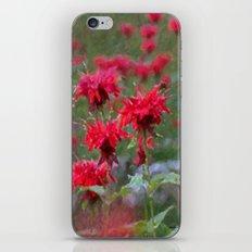 B-Bomb iPhone & iPod Skin