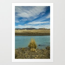 Bush by the river Art Print