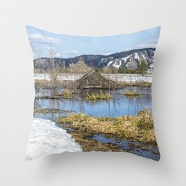 Nice Digs Throw Pillow