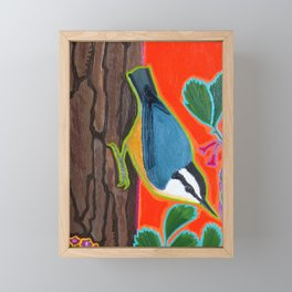 Red Breasted Nuthatch Framed Mini Art Print