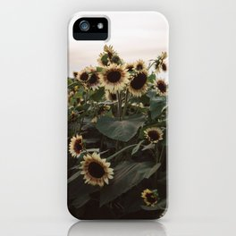 In The Sunflower Field iPhone Case