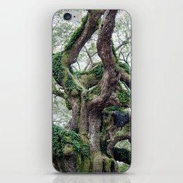 angel oak iPhone Skin