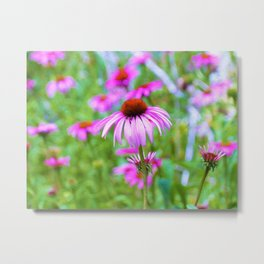 Garden full of Pink Coneflowers Digital Oil Painting Metal Print