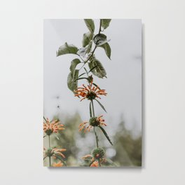 Nature's Reach Metal Print