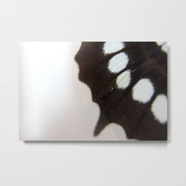 Blue and Black Butterfly Wing Abstract Entomology Photograph Metal Print