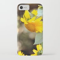 sunflowers iPhone & iPod Cases featuring SUNFLOWERS :) by Teresa Chipperfield Studios