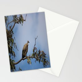 Observant Vultures Stationery Cards