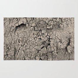 Cracked Earth Rug
