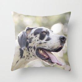 Purebred Harlequin Great Dane Dog Throw Pillow