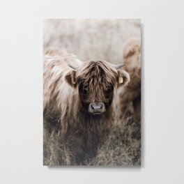 Cattle Farm Life Metal Print