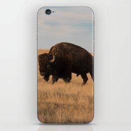 Bison Bull in Badlands iPhone Skin