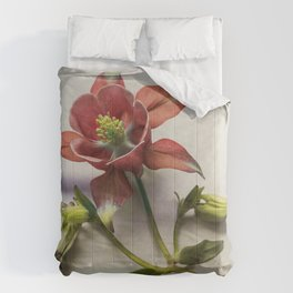 Still life with red columbine flower Comforters