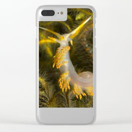 Stearns' Aeolid in a Bed of Brittle Stars Clear iPhone Case