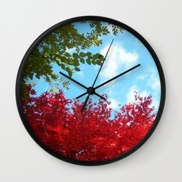 Japanese Maple in Fall with Blue Sky Wall Clock