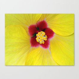 Yellow flower ## Canvas Print