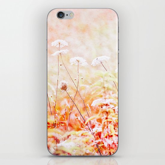 Daucus Carota iPhone & iPod Skin