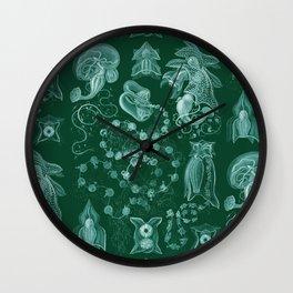 Ernst Haeckel - Siphonophorae Wall Clock