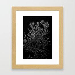 Sticks on Sticks Framed Art Print