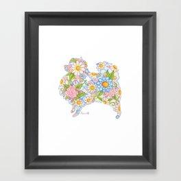 Pretty Blue Pomeranian Framed Art Print