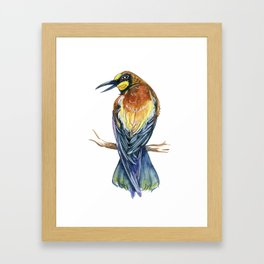 Bee Eater Framed Art Print