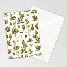 Antique Vintage Botanical Cacti Illustration Print Stationery Cards