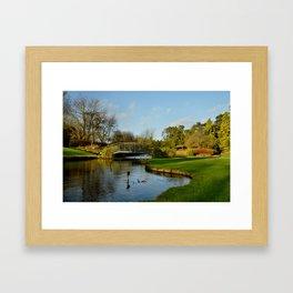 Winter in Burnby Hall Gardens Framed Art Print