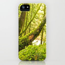 Mother Nature 10 iPhone Case