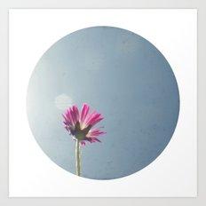 Pink flower circle print Art Print