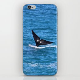 Southern Right Whale on Great Australian Bight iPhone Skin