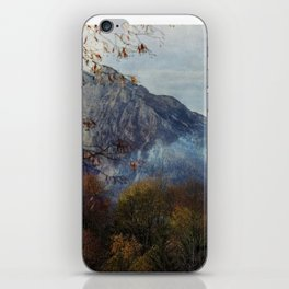 Mighty iPhone Skin
