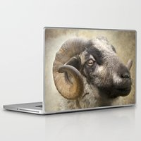 ram Laptop & iPad Skins featuring Ram by Pauline Fowler ( Polly470 )